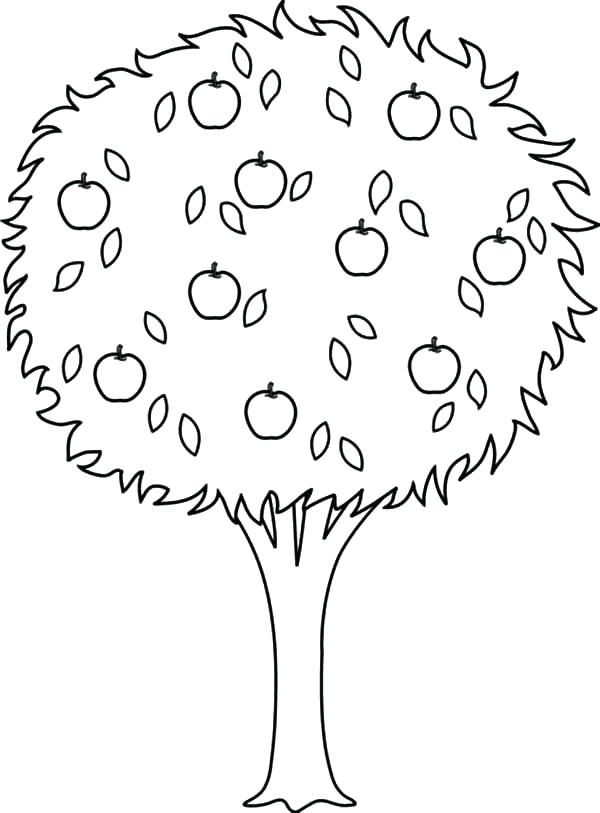 600x813 Plain Christmas Tree Coloring Page Tree Coloring Pages Plain Ideas