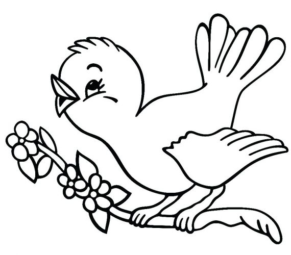 570x500 Easy Coloring Pages For Year Olds