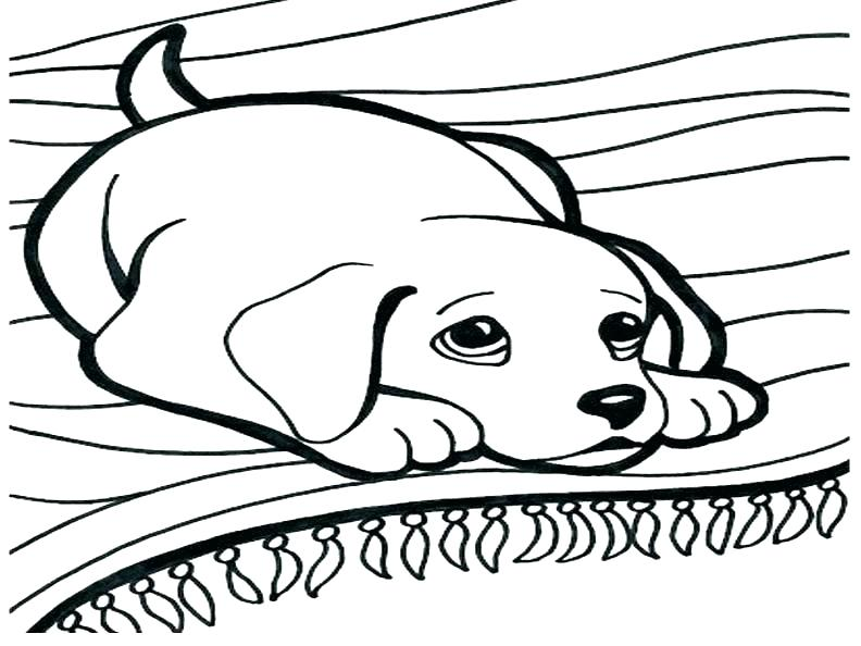 792x594 Color Pages Of Dogs Dog Coloring Sheets Free Printable Free Dog