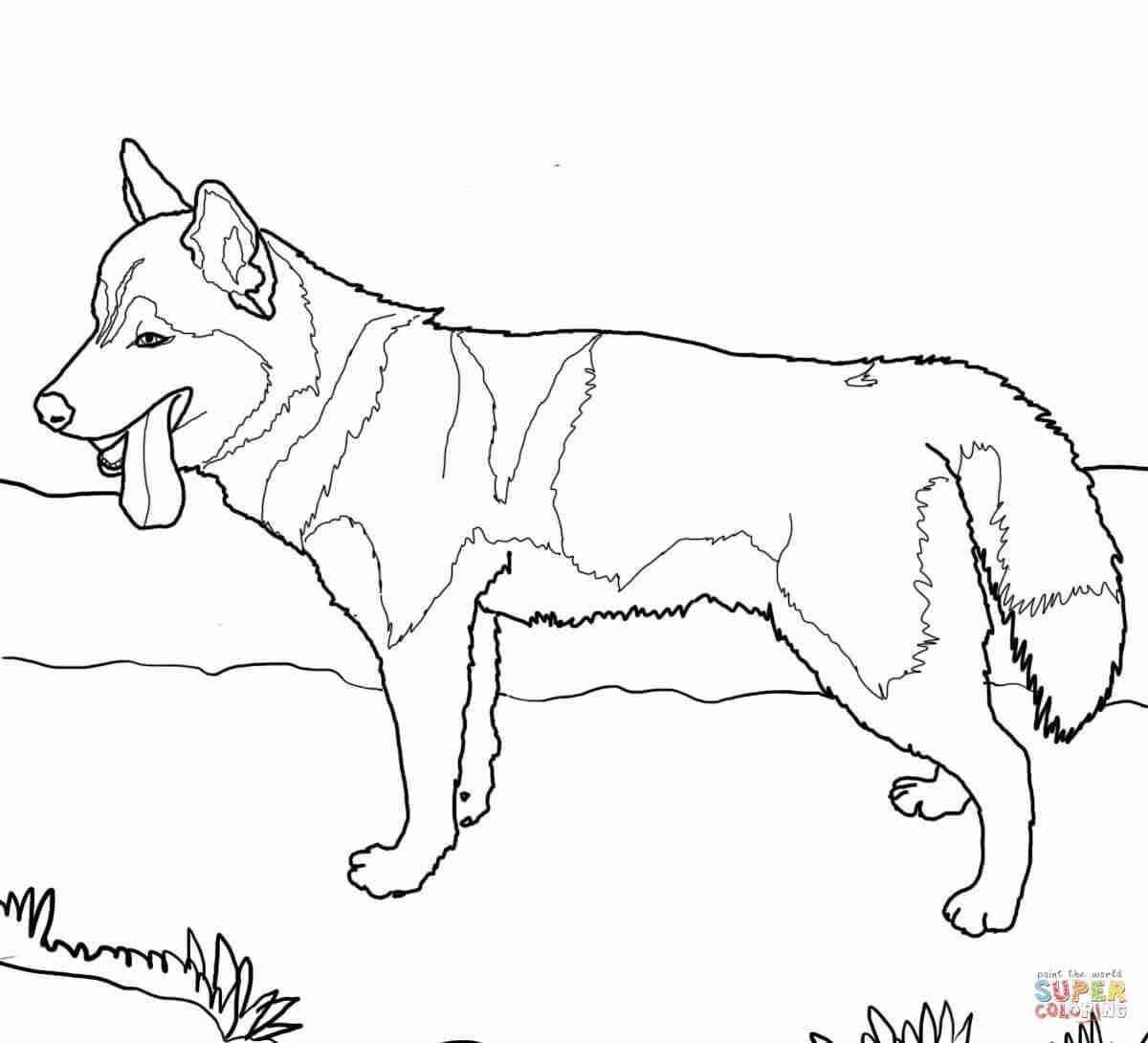 1200x1090 Dachshund Dog Coloring Page Free Printable Pages Simple Olegratiy