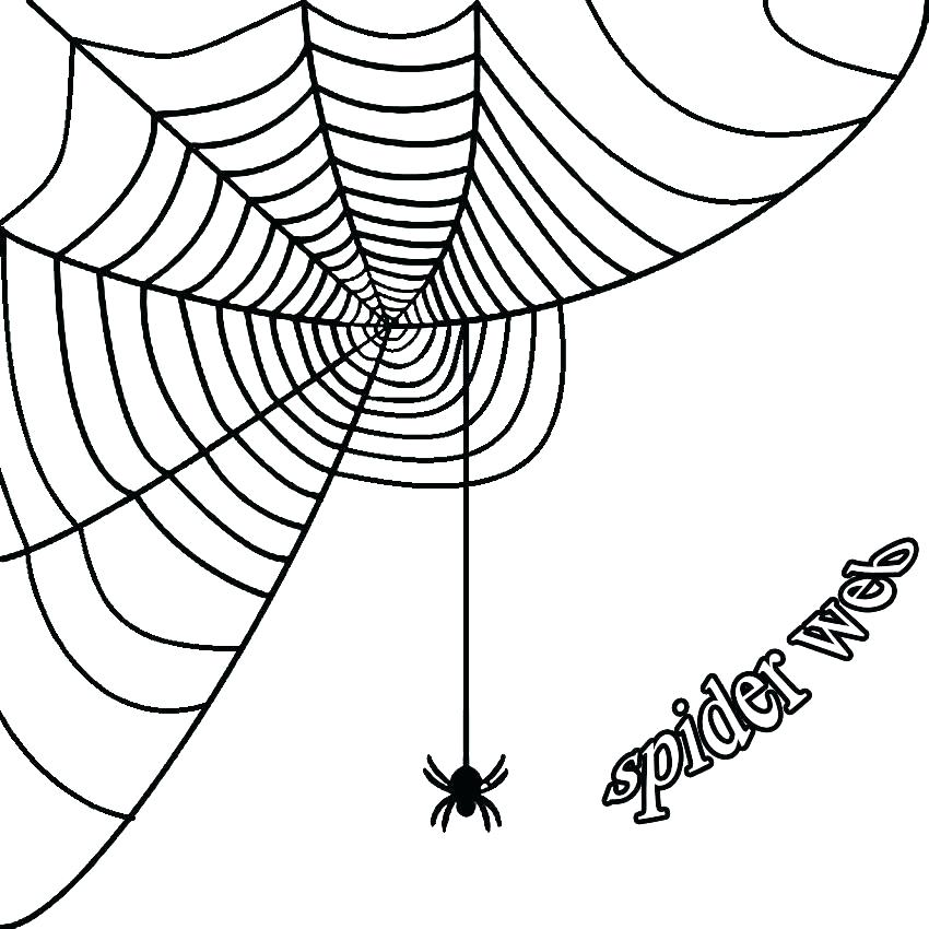 850x850 Halloween Spider Coloring Pages Spider Pumpkin Simple Coloring