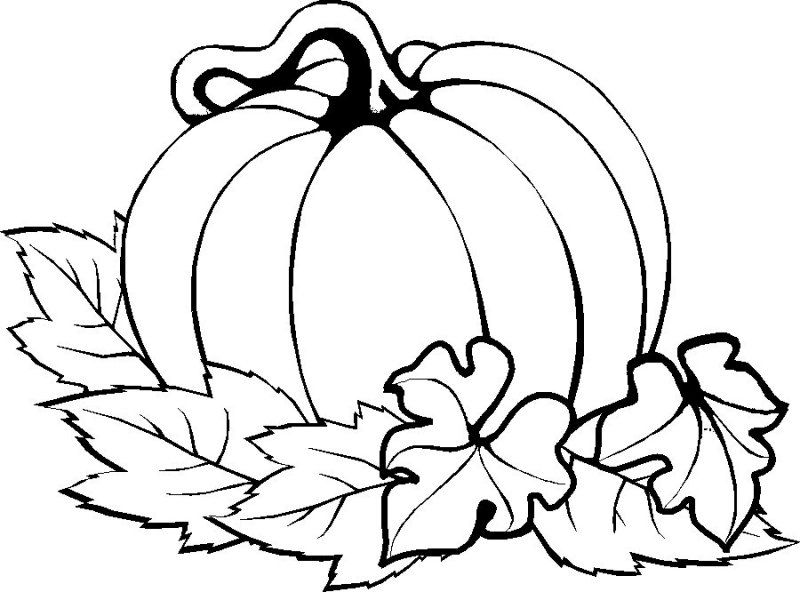 800x592 Pumpkin Easy Thanksgiving Coloring Pages Printables Holidays