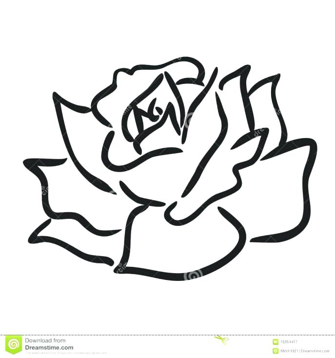 687x734 Outstanding Coloring Page Rose Outstanding Coloring Page Rose