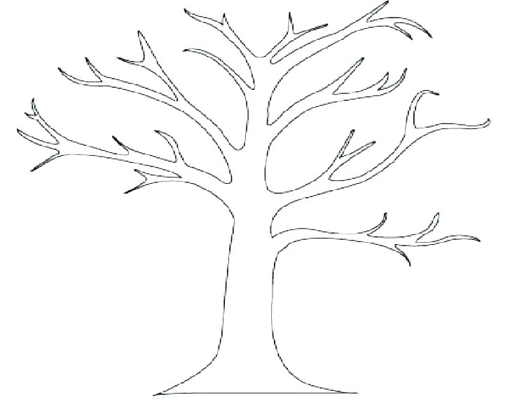 728x593 Simple Tree Coloring Page For Kids Free Printable Picture This