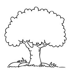 230x230 Simple Tree In Tree Coloring Pages