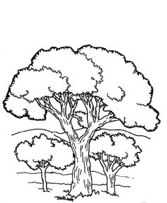 236x287 Simple Tree Coloring Page Have Children Color Then Ink Thumb
