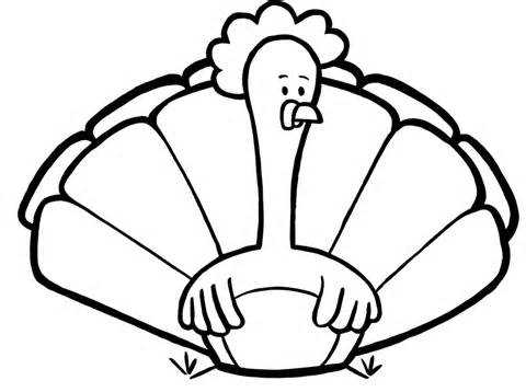 480x358 Simple Thanksgiving Turkey Coloring Page, Turkey Coloring Pages