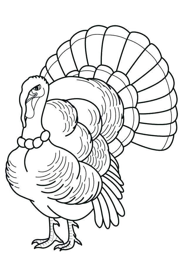 620x875 Turkey Head Drawing Wild Turkey Head Retro Simple Turkey Head