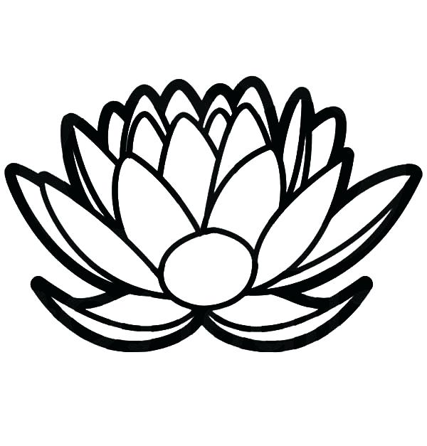 600x627 Free Single Flower Coloring Pages Page Images A Lotus