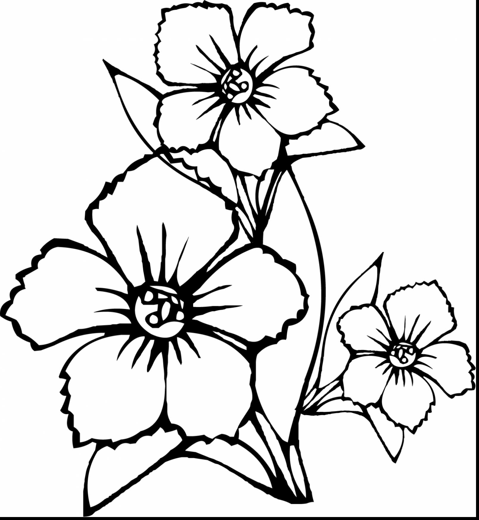 1610x1746 Happy Single Flower Coloring Pages Fresh Detai