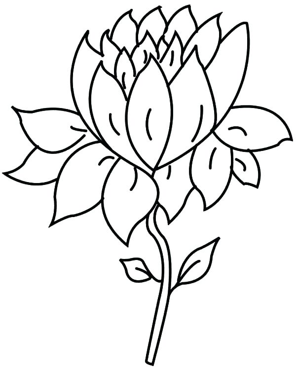 600x748 Lotus Flower Coloring Page A Single Lotus Flower Coloring Pages