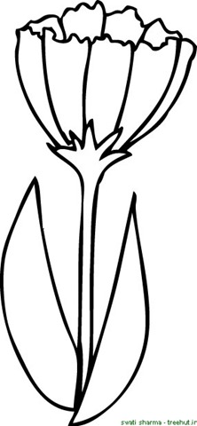222x480 Printable Flower Coloring Pages