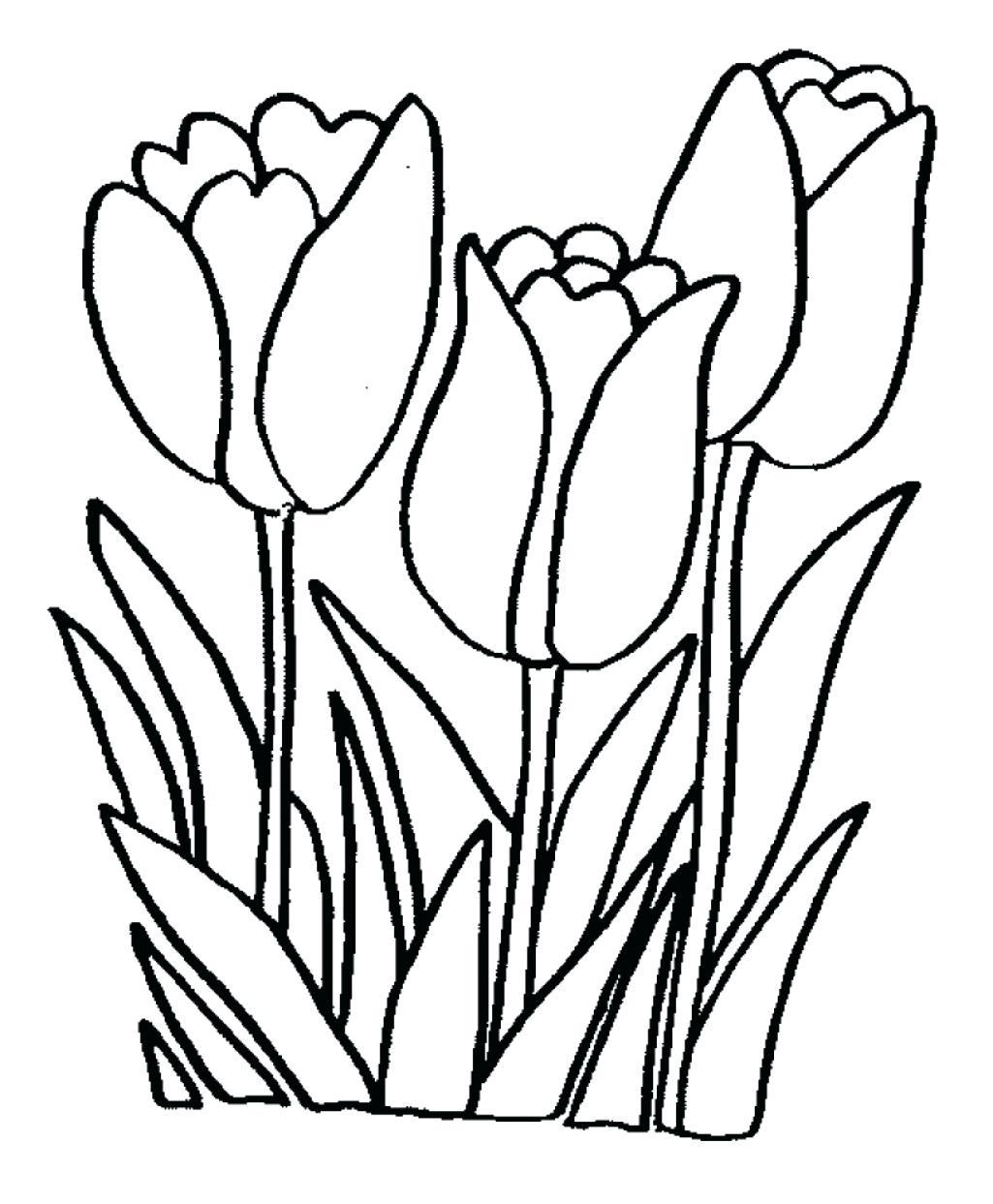 1025x1243 Shocking Draw A Single Flower Coloring Pages For When They Want
