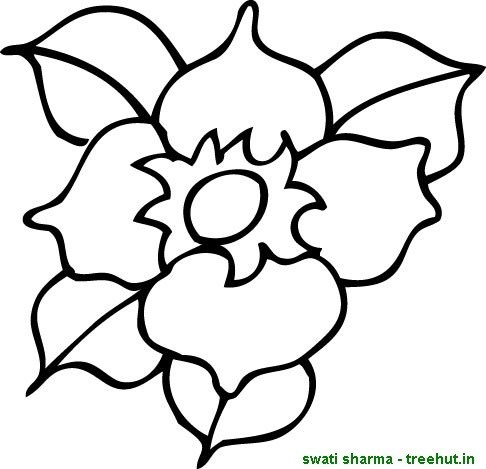 486x469 Single Flower Coloring Pages