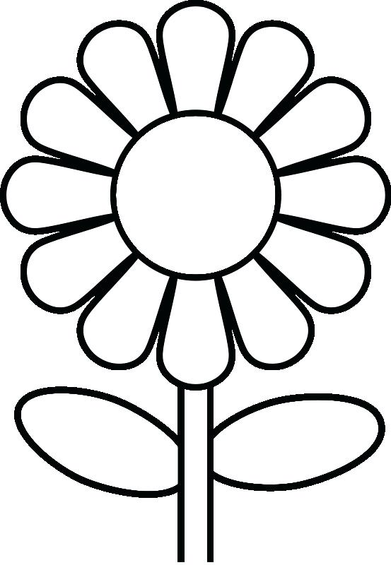 553x800 Coloring Book Pages Flowers Flower Coloring Pages A Single Flower