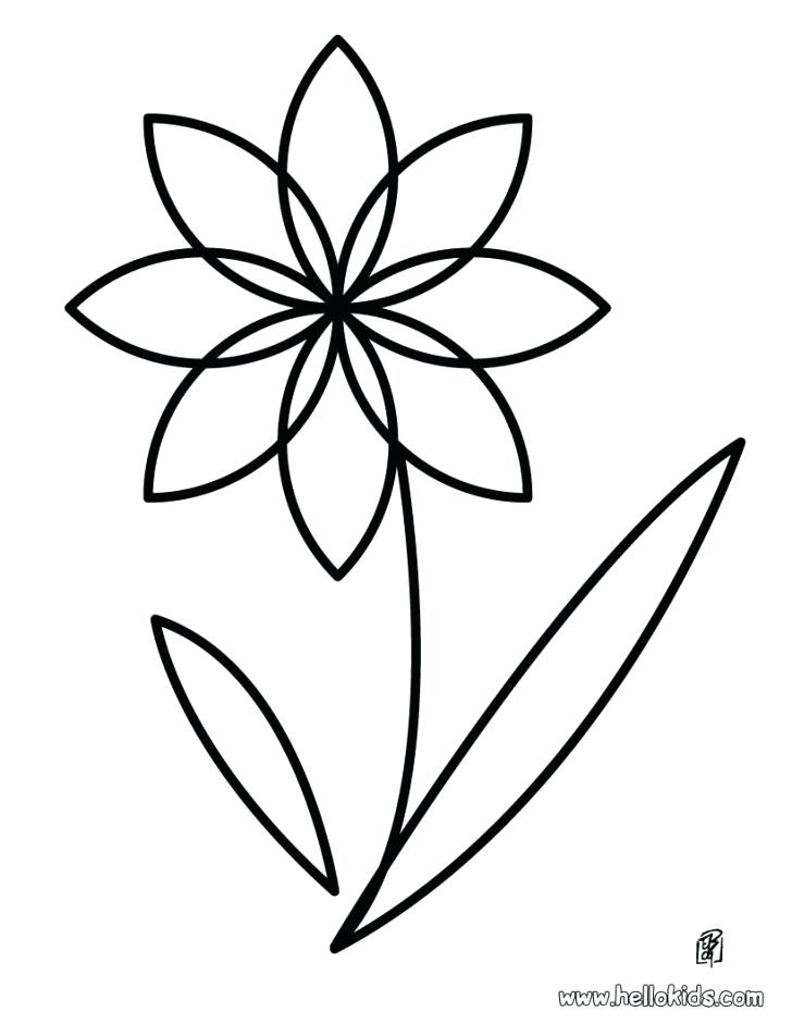 728x941 Flower Color Meanings Death Kids Coloring Coloring Images