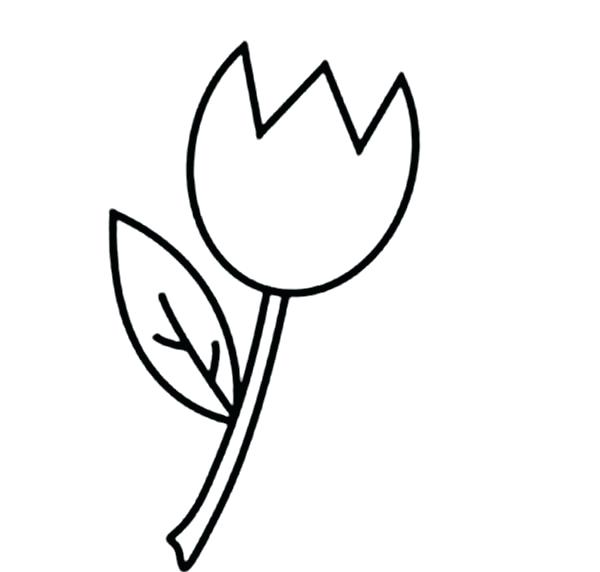 600x572 Free Single Flower Coloring Pages Flowers Healthy