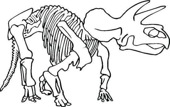550x347 Skeletal System Coloring Page Skeletal System Coloring Pages