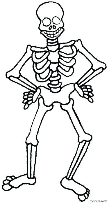 375x700 Skeleton Coloring Page Skeletal System Coloring Pages Human
