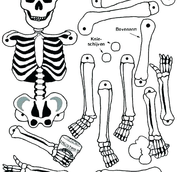 618x600 Skeleton Coloring Page Coloring Pages Skeleton Skeleton And His