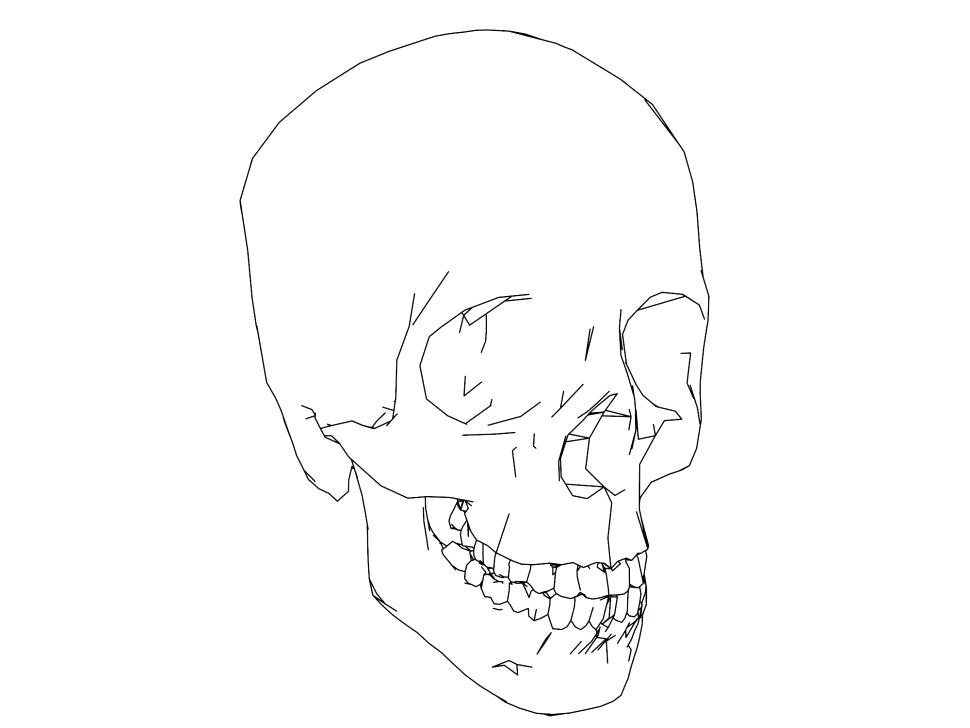 970x728 Skull Coloring Pages Anatomy Sketch Coloring Page Image
