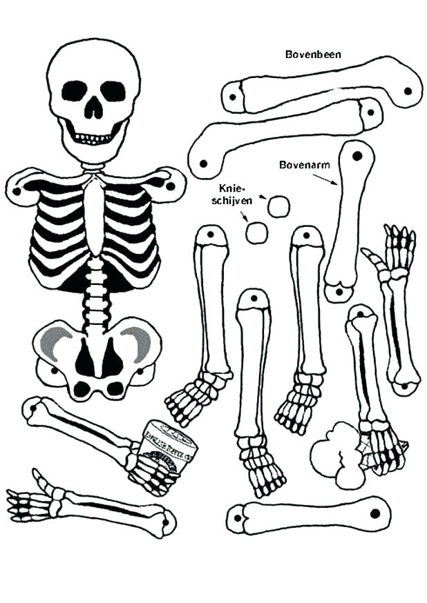 618x874 Skeleton Coloring Page Skeleton Coloring Pages To Print Coloring