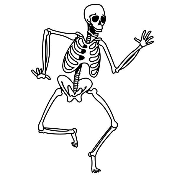 600x600 Skeleton Coloring Pages
