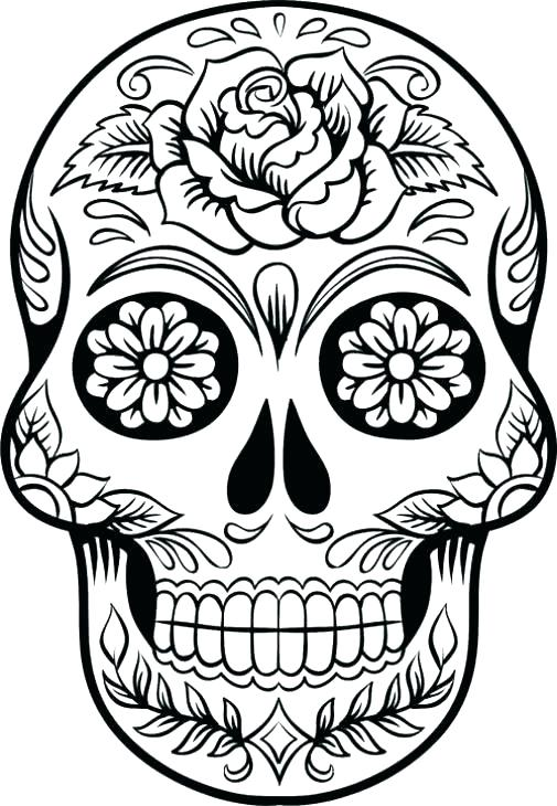 505x730 Human Skeleton Coloring Pages Skeleton Coloring Skeleton Coloring