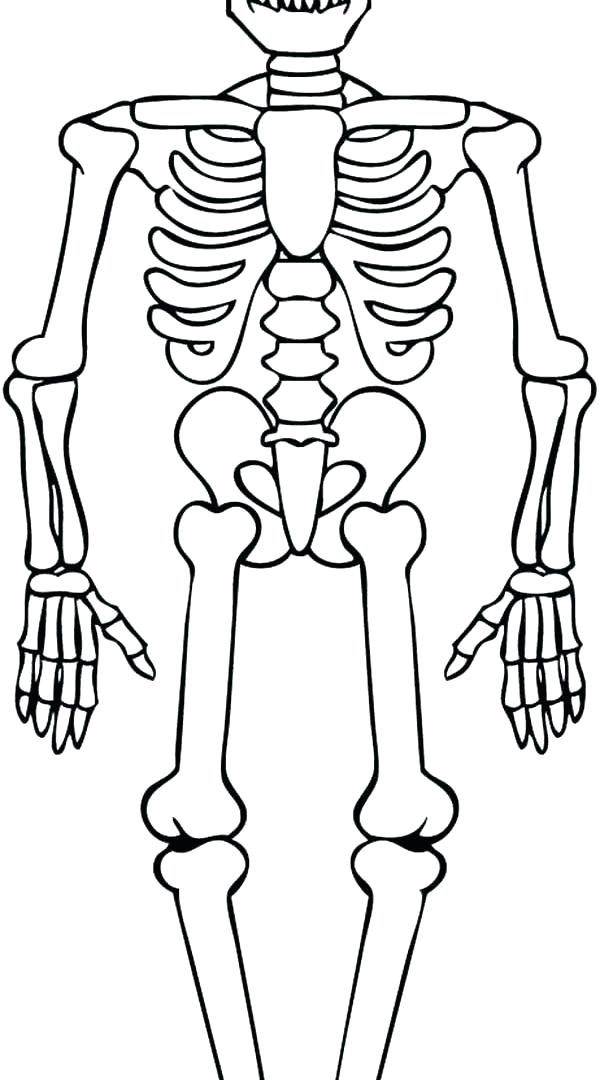 600x1080 Skeleton Coloring Page Coloring Pages Skeleton Skeleton And His