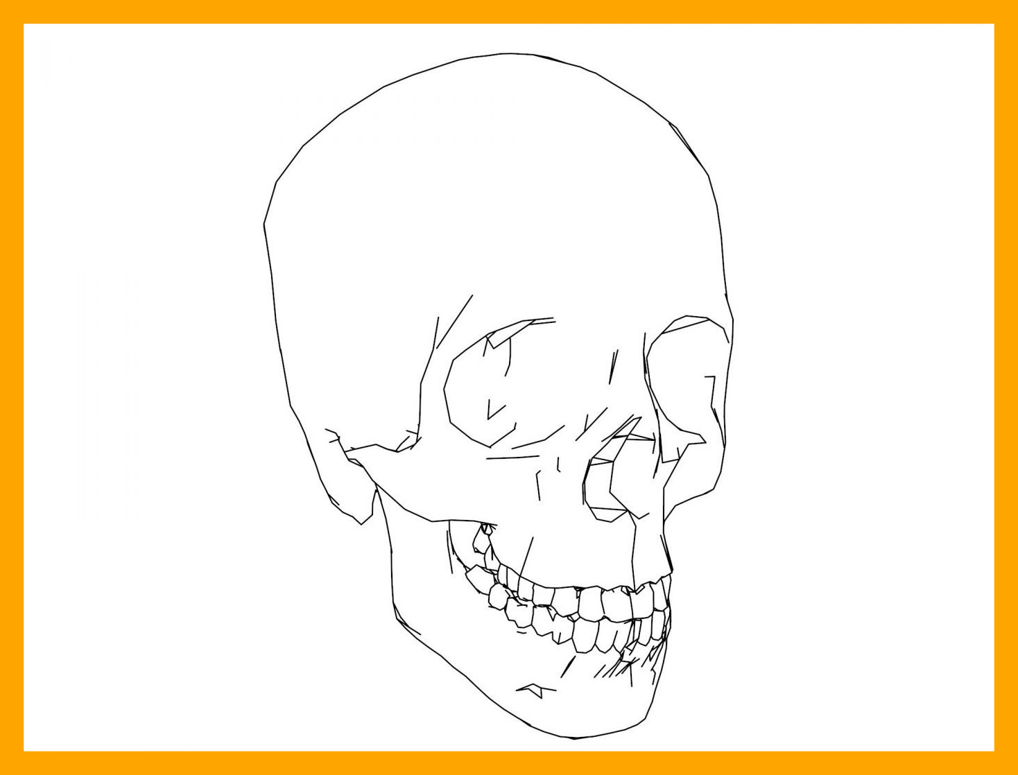 Skull anatomy coloring pages at getdrawings com free for personal