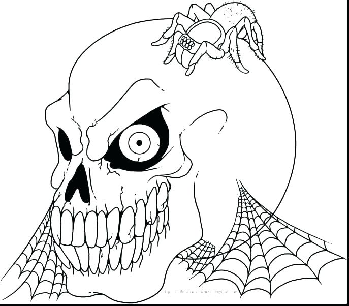 687x602 Skull Coloring Pages Anatomy Free Anatomy Coloring Pages Anatomy