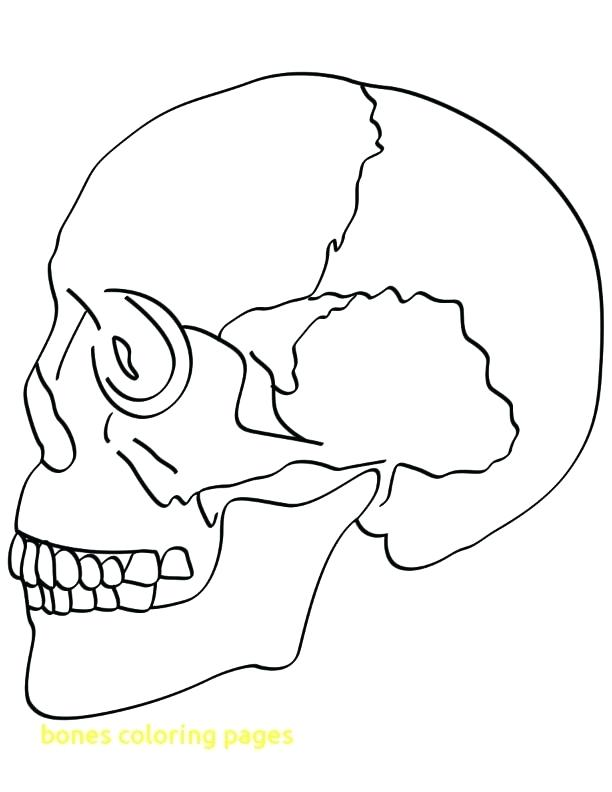 612x792 Skull And Crossbones Coloring Pages Bones Coloring Pages