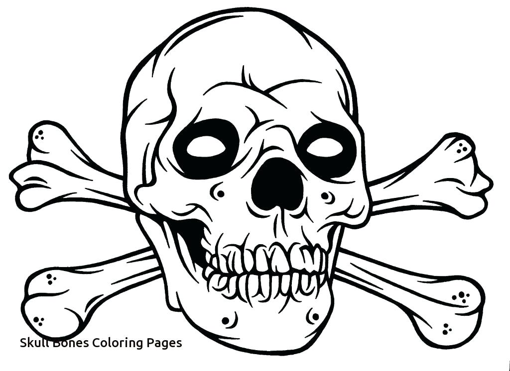 1024x746 Skull And Crossbones Coloring Pages Skull And Bones Coloring Pages