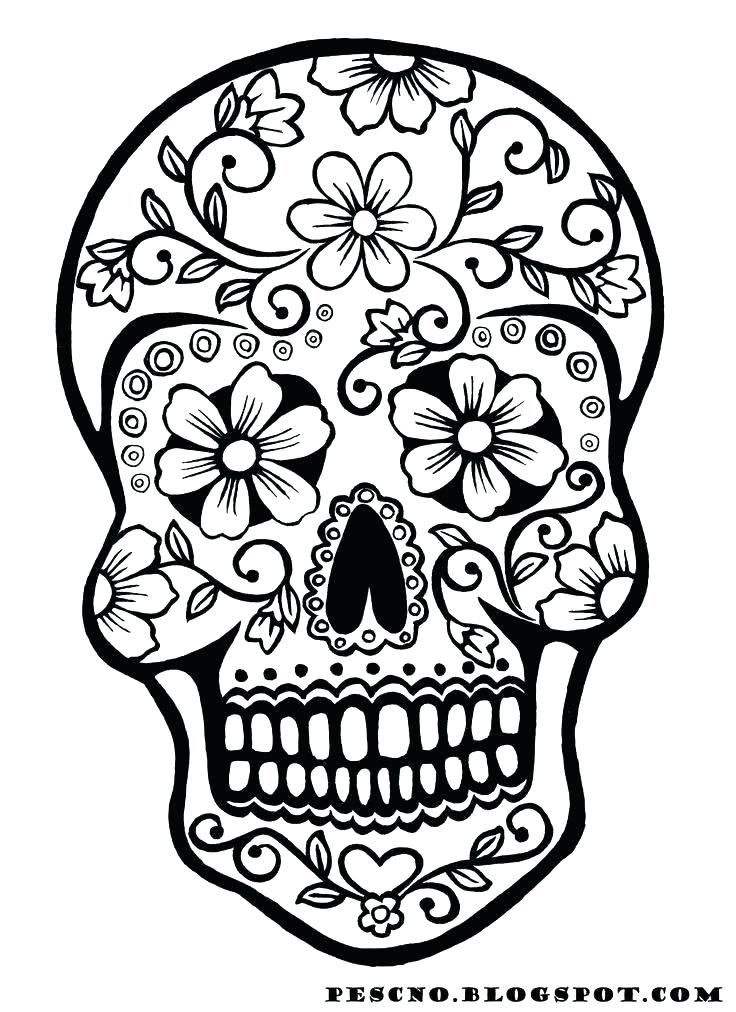 736x1012 Skull And Crossbones Coloring Pages Skull And Crossbones Coloring