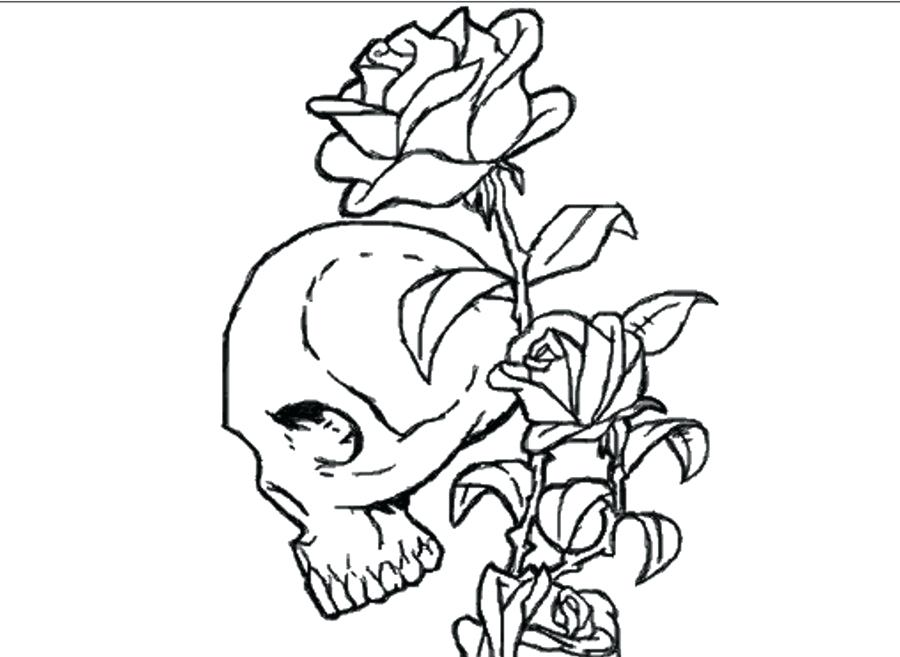 900x657 Skulls And Roses Coloring Pages Coloring Pages Skull Sugar Skull