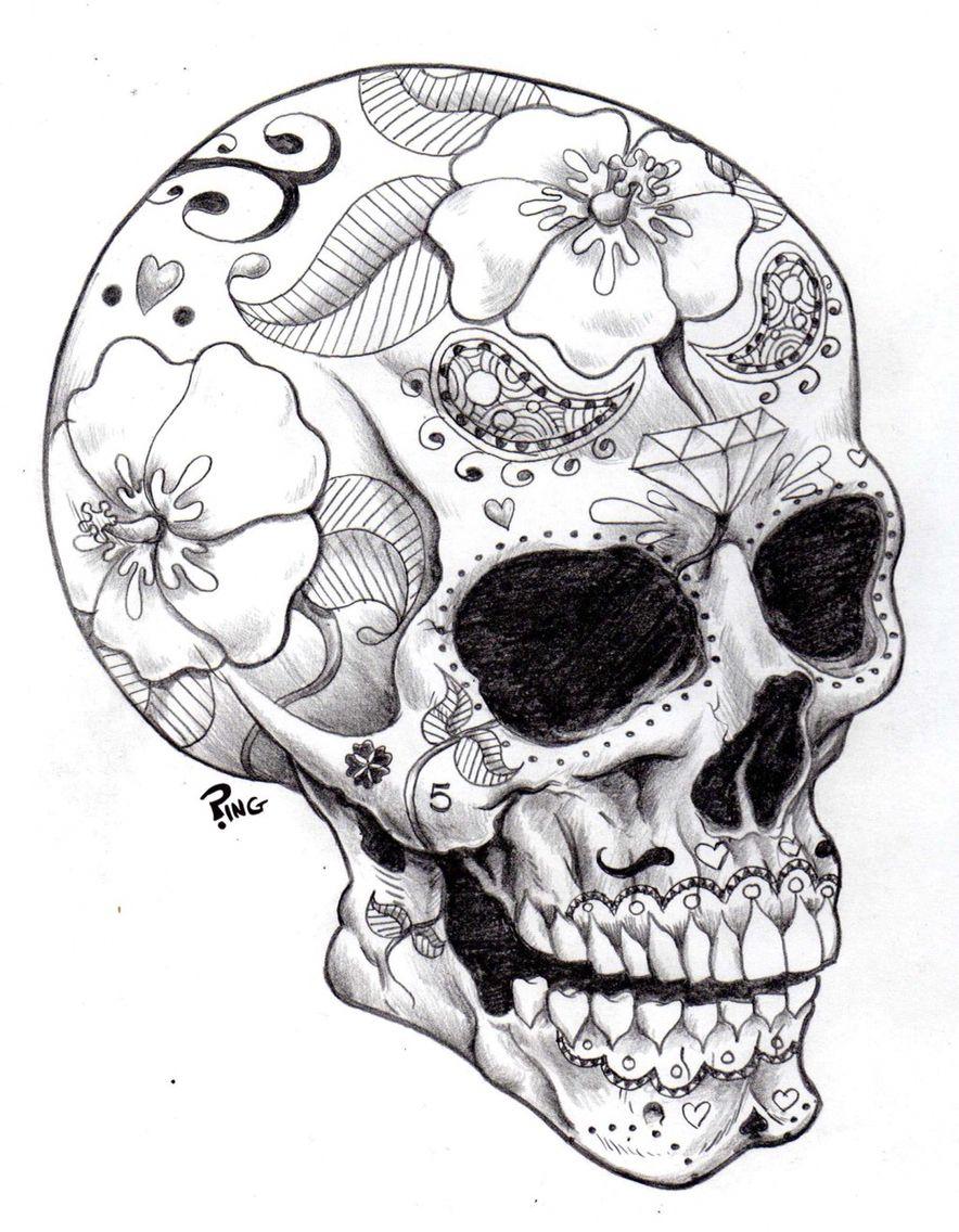 884x1136 Dotd Sketched Sugar Skull