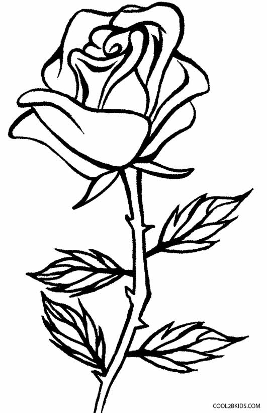 531x820 Printable Rose Coloring Pages For Kids