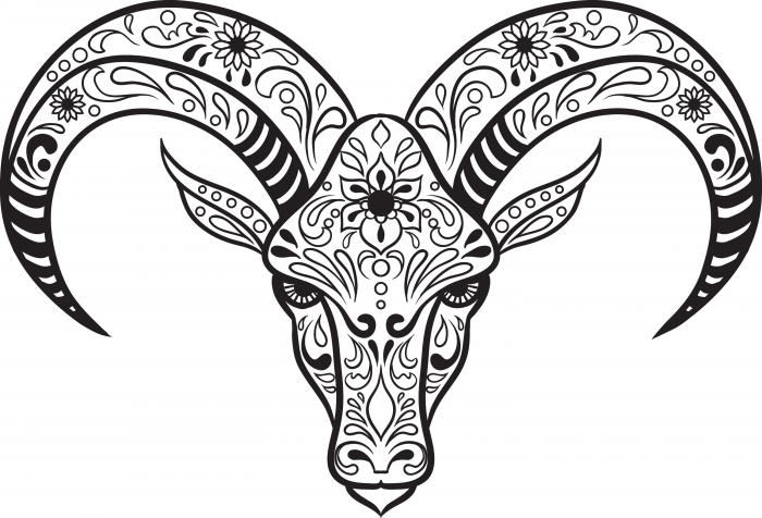 700x476 Sugar Skull Animal Coloring Pages
