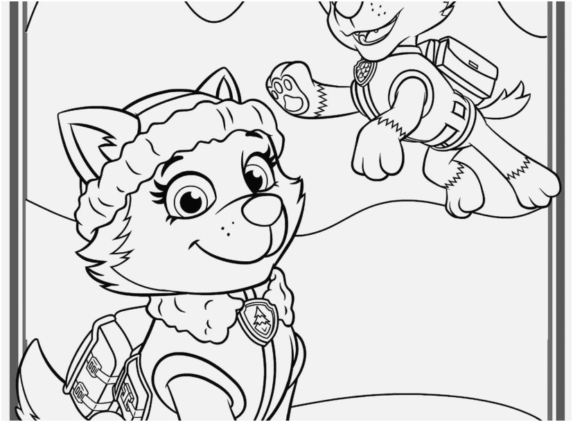 Skye Paw Patrol Coloring Pages At Getdrawings Com Free For