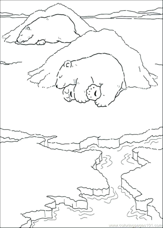650x912 Sleeping Bear Coloring Page Animals That Hibernate Bear Cave