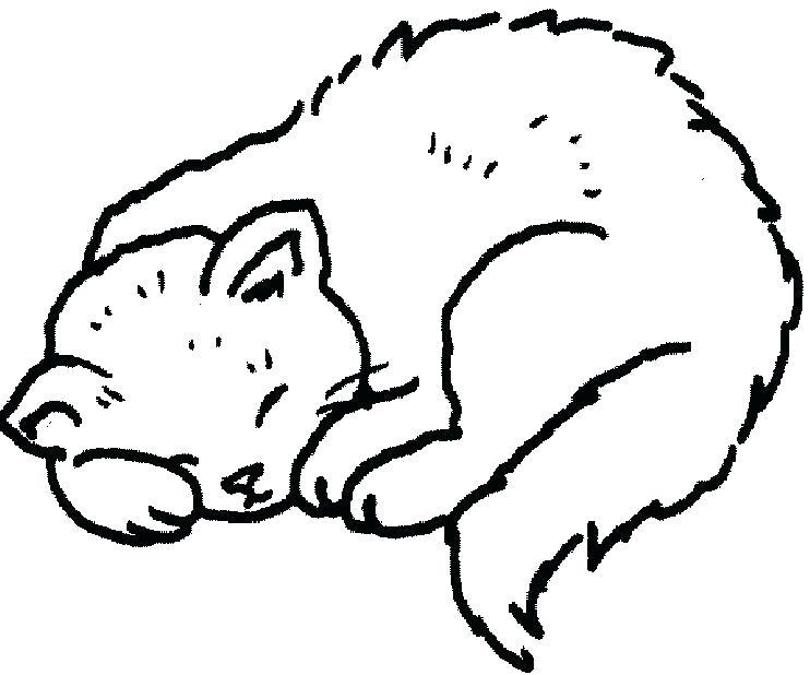 742x618 Sleeping Coloring Page Sleeping Coloring Page Cats Sleeping
