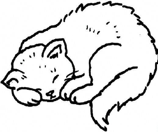 Sleeping Cat Coloring Pages