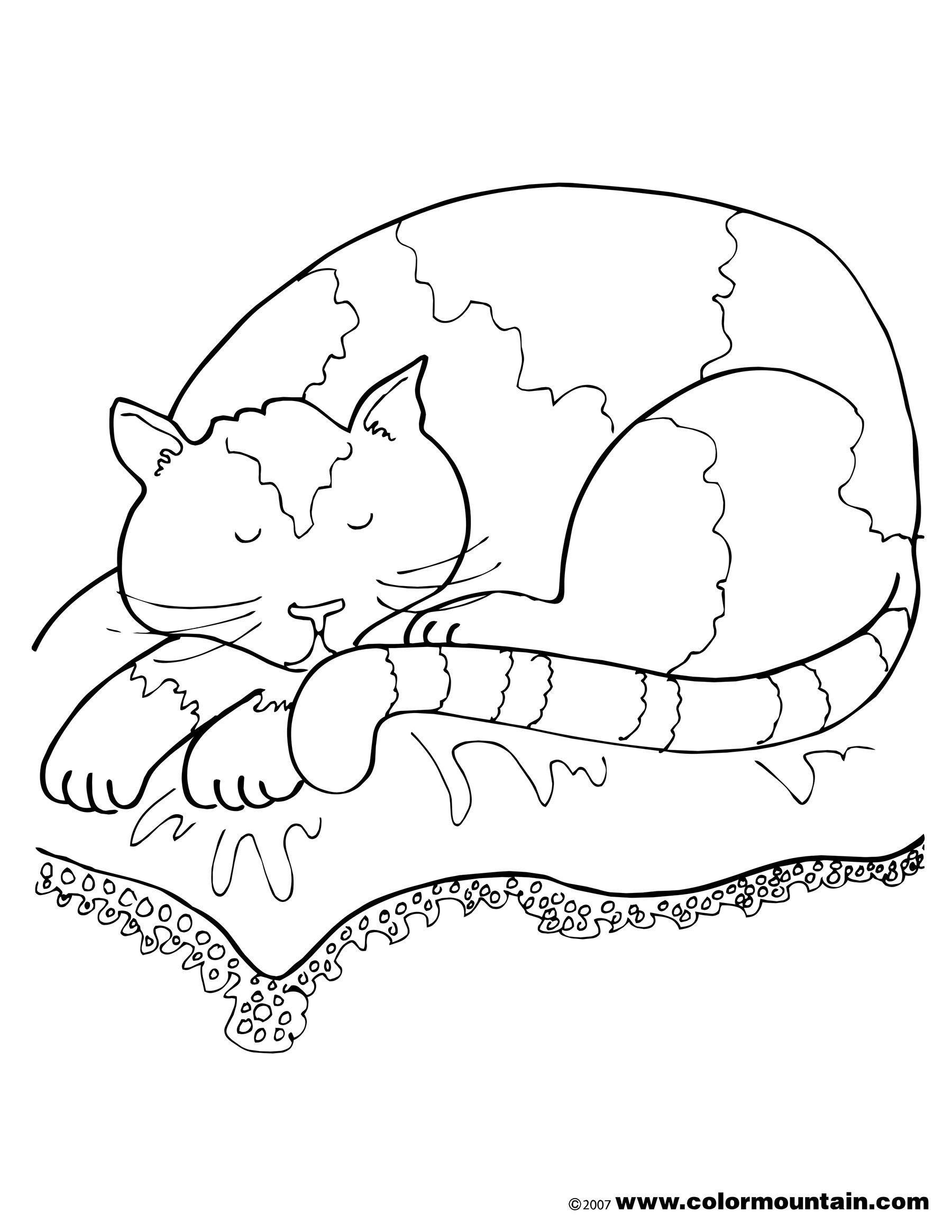 1800x2329 Appealing Nap Coloring Page Image Clipart Grigorg Picture