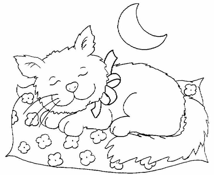 731x600 Sleeping Cat Printable Coloring Sheet For Kids