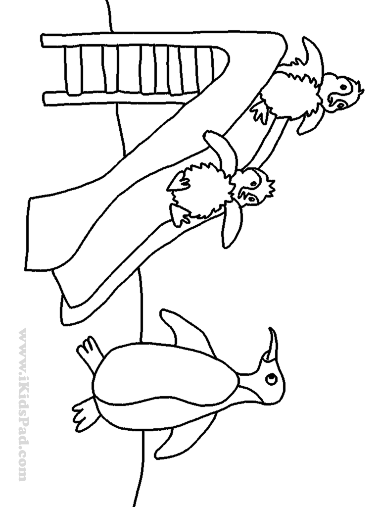 768x1024 Water Slide Coloring Page