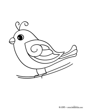 364x470 Cute Bird Coloring Pages