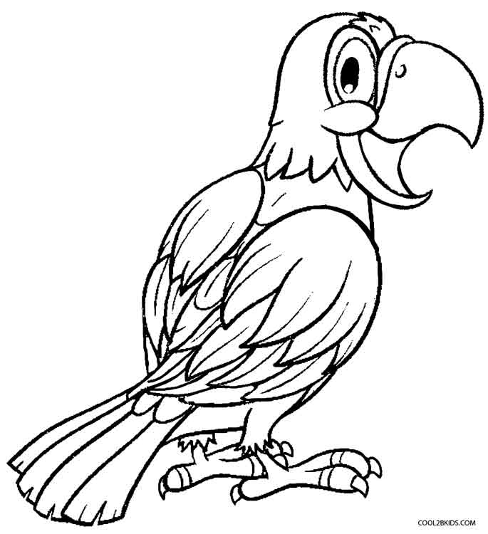 685x750 Printable Parrot Coloring Pages For Kids
