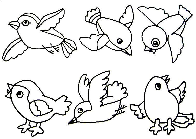756x538 Bird Coloring Page Trinity Kidsparents Night Out