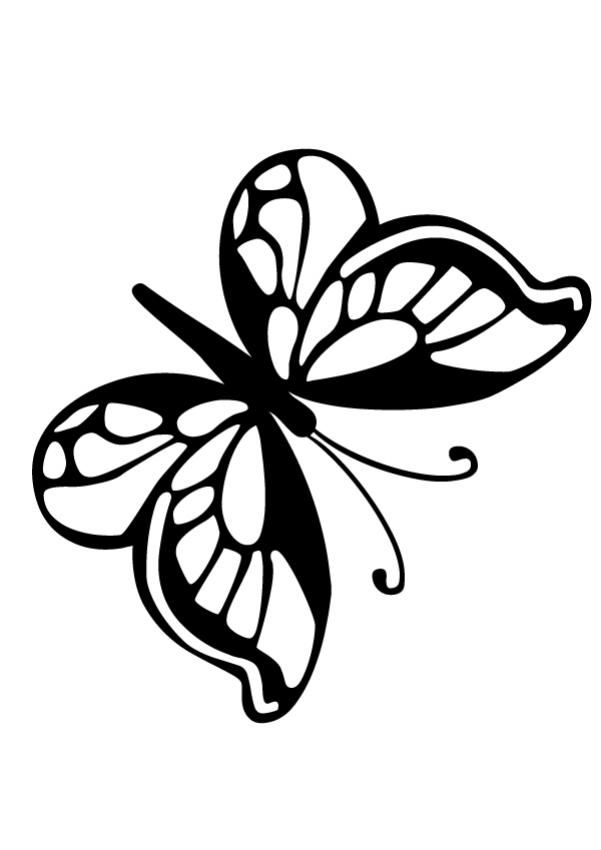 Small Butterfly Coloring Pages