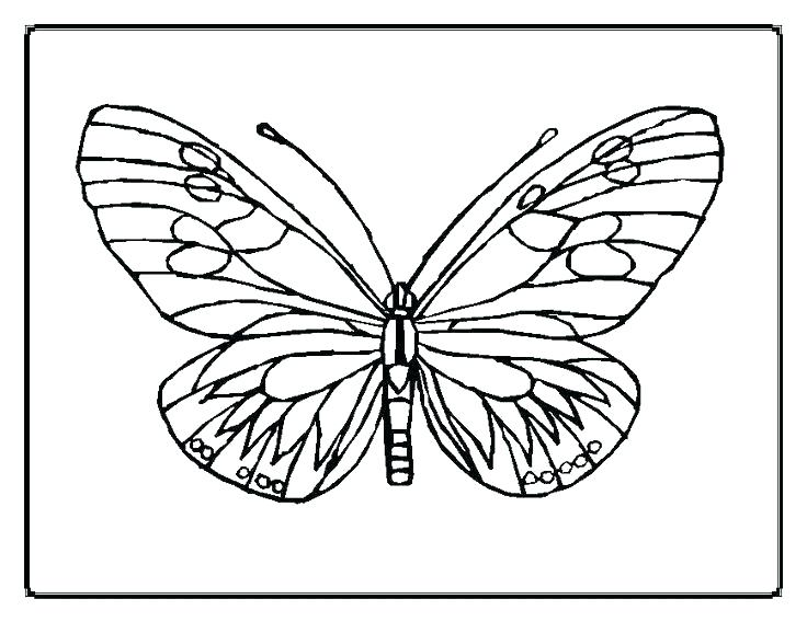 736x568 Butterfly Coloring Page Printable Coloring Page Of Butterfly